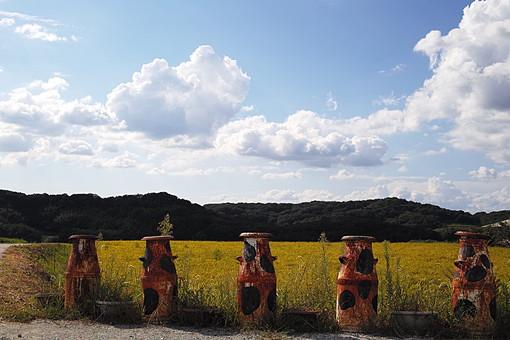 秋 稲穂 黄金 金 植物 栽培 畑 作物 農作物 農業 自然 実り 豊富 豊 環境 田舎 森 林 木 樹 樹木 景色 風景 雲 空 山 オブジェ 牛乳