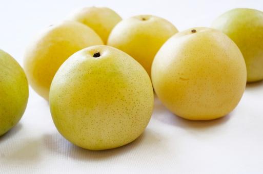 二十世紀梨の写真