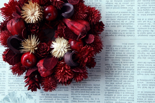 リース 赤 りんご オーナメント 飾り 壁掛 松ぼっくり まつぼっくり 英字 英文字 クリスマス