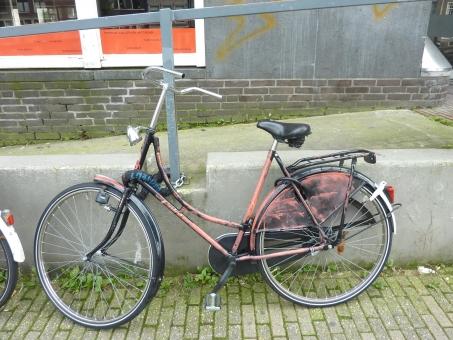 自転車 エコ バイク bike biycle eco ecofriendly holland オランダ ちゃり りゃりんこ ママチャリ マウンテンバイク