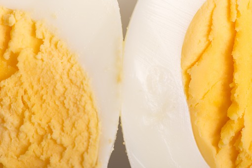 たまご 卵 玉子 タマゴ エッグ 卵色 料理 食べ物 食材 食料 物撮り 屋内 人物なし 上から視線 レシピ 鶏 にわとり ニワトリ ボイル ゆで卵 半分 半割り 黄身 白身 白バック 床 白 黄 2切れ アップ ズーム 接写