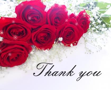 バラ ありがとう 感謝 thank you カード 花束 バラの花束 赤いバラ お誕生日 背景 メッセージカード キラキラ 花 植物 エレガント 女性的 上品 贈り物 ギフト クラシカル 行事 プレゼント