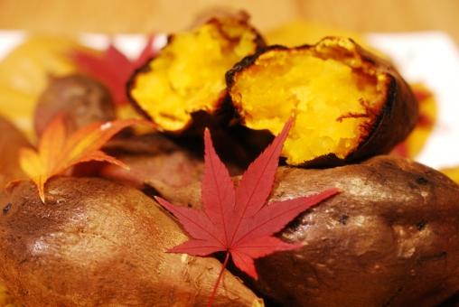 紅葉 もみじ モミジ 赤 葉っぱ 葉 落ち葉 落葉 秋 秋イメージ 収穫の秋 食欲の秋 焼芋 焼いも 焼き芋 ヤキイモ おいも お芋 芋 いも イモ 黄色 ホクホク 食べ物 美味しい おいしい サツマイモ さつま芋 さつまいも 半分 中身