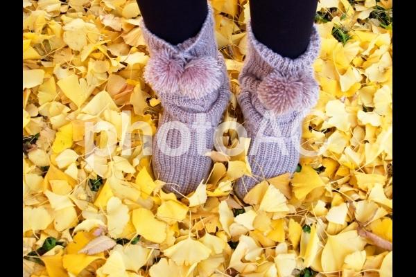 イチョウの落ち葉とブーツの写真