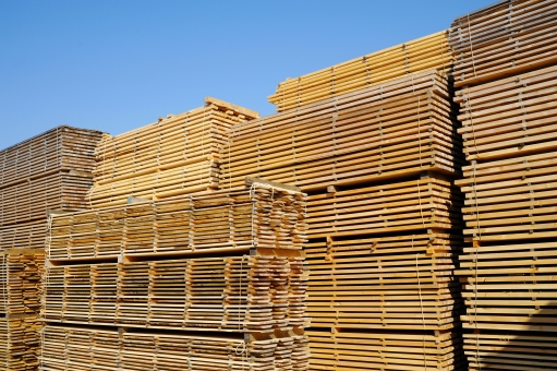 木 材木 木材 建材 資材 角材 製材 製材所 製材置き場 材料 パターン 年輪 木肌 木目 断面 切断 カット 切る 素材 環境 植物 乾燥 質感 テクスチャ テクスチャー 背景 バックグラウンド 建設 模様 積む 重なる 山積み 空 青空 積み上げる 積上げる 黄色 茶色 板