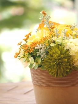 黄色い花 植物 花 造花 鮮やか 明るい 優しい グリーン ガーデニング 寄せ植え インテリア 背景 自然 春 初夏 4月 5月 6月 穏やか テラコッタ