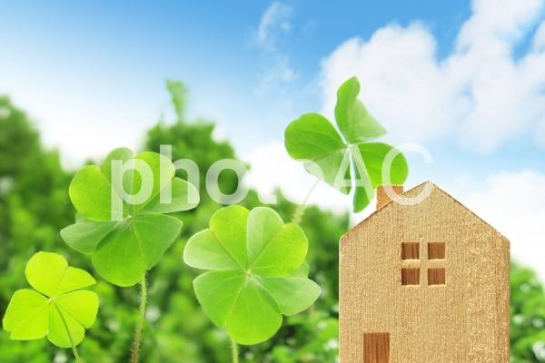 四つ葉のクローバーと家の積木の写真