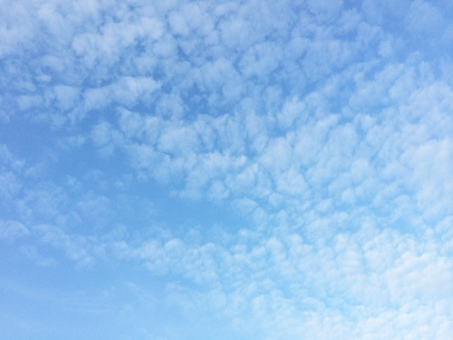 青空 あおぞら うろこ雲 秋空 秋の空 空 そら 雲 もくもく くも 秋雲 背景 秋 うろこぐも 鱗雲 ブルー 青 蒼い 水色 さわやか 素材 スカイ ブルースカイ sky 自然 風景 景色 冬 グラデーション あおい