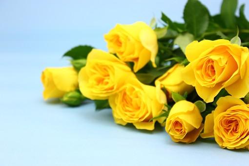 父の日 イベント プレゼント ギフト 行事  花 フラワー 生花 バラ ばら 薔薇 明るい さわやか 爽やか  花束 黄色 青色 水色 6月 六月 感謝 贈る 青バック