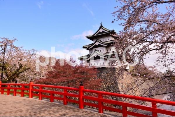 弘前城と桜の写真