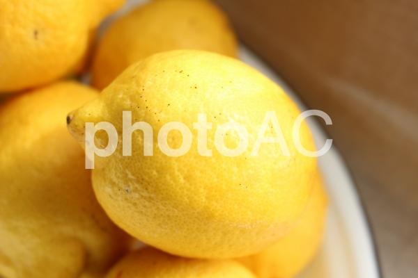 有機栽培レモンの写真