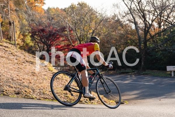 ロードバイク ダウンヒルの写真