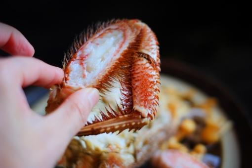 毛ガニ けがに ケガニ 毛蟹 カニ かに 蟹 鍋 なべ ナベ 冬 料理 土鍋 海鮮 蟹爪