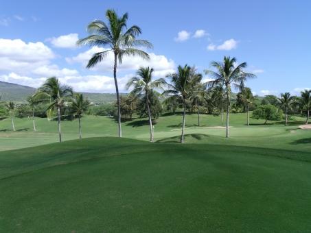 南国ハワイでリゾートゴルフの写真
