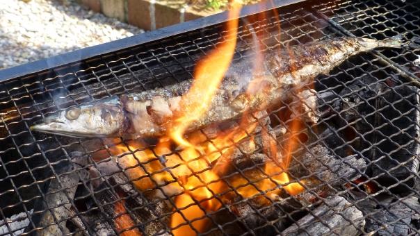 さんま サンマ 秋刀魚 秋 秋の味覚 魚 さかな 網焼き 網 炭火 炭火焼 炎 火 炭 焼き魚 fish 焼き 焼く 旬 味覚 アウトドア 屋外 炭焼き fire BBQ バーベキュー