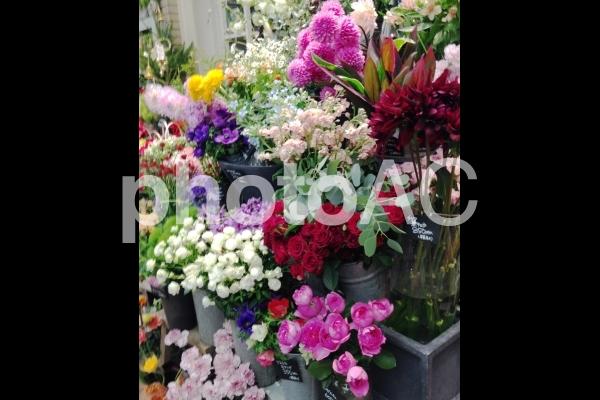 花屋の写真