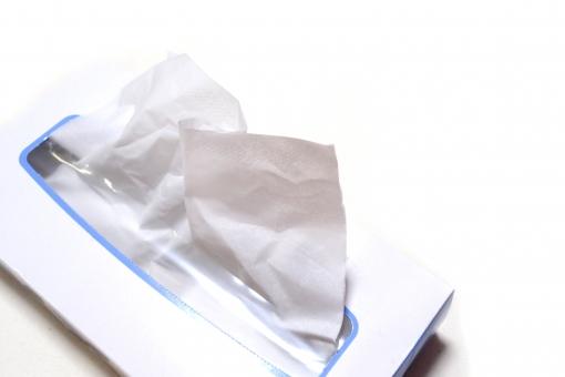 ティッシュ ティッシュペーパー ぺーぱー ペーパー ちり紙 鼻かみ 日用品