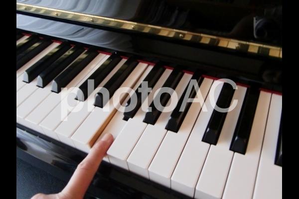 ピアノを弾くの写真