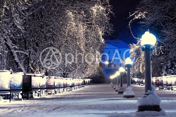 冬の夜の街4の写真