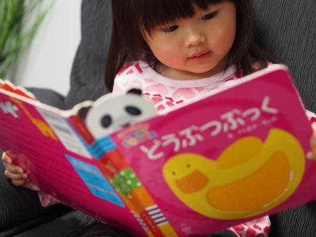 子供 子ども 幼児 教育 真剣 興味 読書 リビング 女児 日本人 cute girl child kids japanese book 少女 育児 元気 絵本 女の子 園児