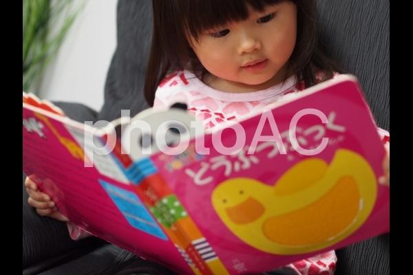 絵本を読む女の子1の写真