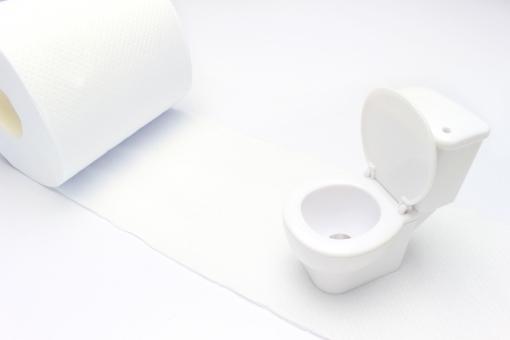 トイレ お手洗い 便所 イメージ ミニチュア 白 コピースペース テキストスペース 悩み 洋式 洋式トイレ 洋式便所 清潔 便器 日本 トイレットペーパー 便所紙 インテリア シンプル