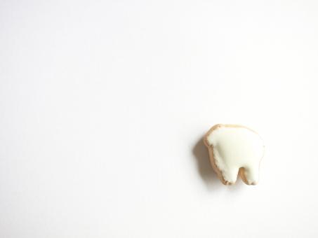 動物 幼稚 白 ホワイト クッキー ビスケット お菓子 背景 砂糖 シュガー 子供 こども ベビー 駄菓子