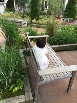 庭 庭造り 庭づくり 庭作り 屋上 子供 植物 植木 緑 イヤイヤ期 2歳 ベンチ うしろ姿