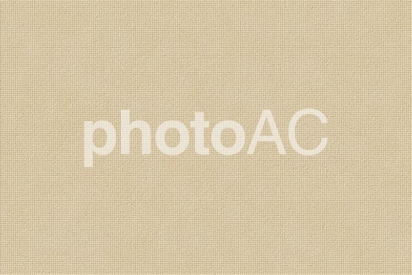 背景素材 ー プリズムレザー(角シボ型押し牛革)/ベージュの写真
