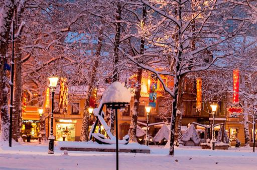 冬 行事 12月 クリスマス 屋外 外 野外 風景 建物 街並み 街 夜 夜景 雪 雪景色 明かり 灯り 街灯 静か 静寂 無人 電飾 イルミネーション 飾り 木 街路樹 外国 Xmas