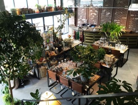 インテリア ショップ インテリアショップ 家具 植物 ブルックリン 雑貨 おしゃれ オシャレ デザイン 店 店舗