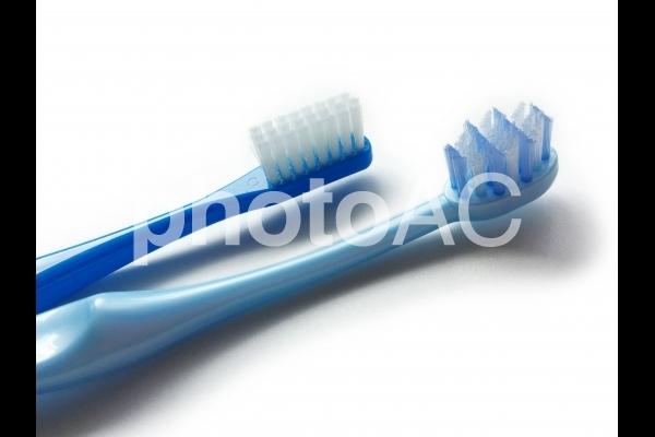 2種類の歯ブラシの写真