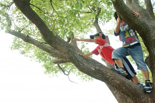 木登りに関する写真写真素材なら写真ac無料フリーダウンロードok