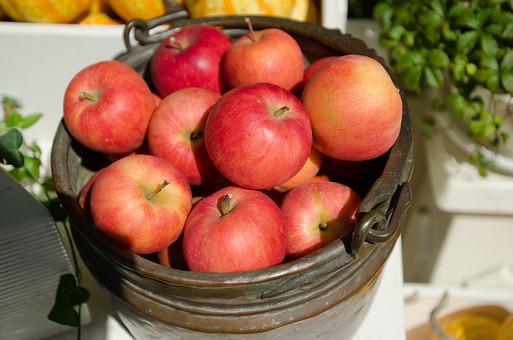 リンゴ りんご 林檎 アップル 果物 くだもの 果実 フルーツ 食べ物 食材 デザート 美容 栄養 痩身 ダイエット 秋 秋の味覚 収穫 出荷 農業 食品 沢山 いっぱい 甘い バケツ
