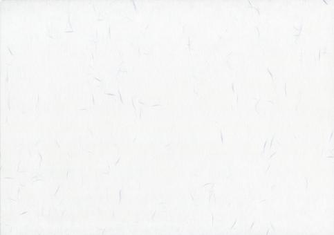 和紙の写真