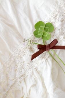 クローバー 植物 草 四葉のクローバー 四葉 ラッキー 幸せ レース ガーリー リネン シロツメクサ シロツメグサ 野花 草花 花 葉 花束 四ツ葉 四つ葉 お守り