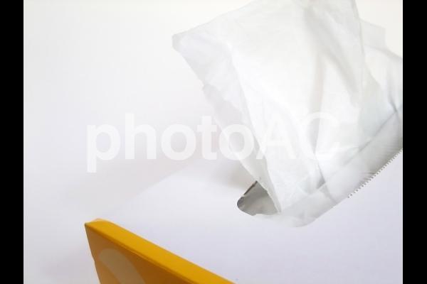 ティッシュボックスの写真