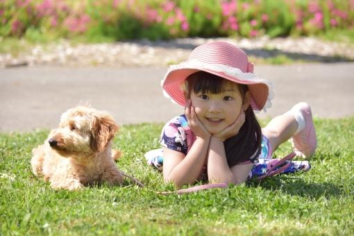 子ども 子供 こども 女の子 動物 生物 仲良し 牧場 夏 春 散歩 お散歩 mdfk023 犬 いぬ 寝転がる