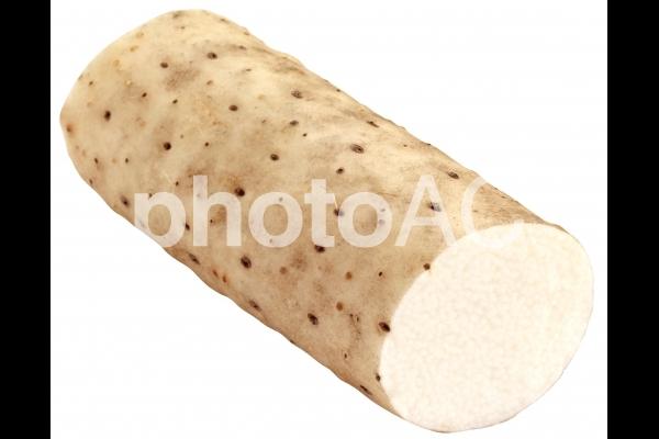 長芋(PSDは背景透過・切抜きパス入り)の写真