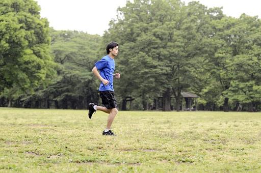 全身 人物 人 男性 男 大人 日本人 20代 若い 屋外 公園 スポーツ 運動 Tシャツ 青 ジョギング ランニング 走る ジョガー ランナー トレーニング エクササイズ 練習 趣味 健康的 健康維持 体調管理 ライフスタイル 目標 クロスカントリー 横向き mdjm025