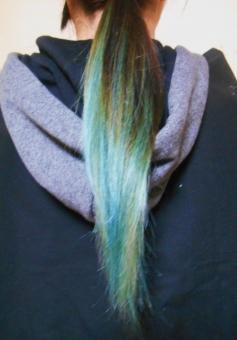 カラーリング 染髪 せんぱつ ヘアカラーリング 髪 かみ 髪の毛 ヘアカラー ブルー 青 美容院 ファッション カラーリング剤 若者 髪の傷み 地肌 ダメージ バンドマン ビジュアル系 髪色 髪質 長髪 色素 自己主張 おしゃれ トレンド ミュージシャン 毛髪 女性 校則