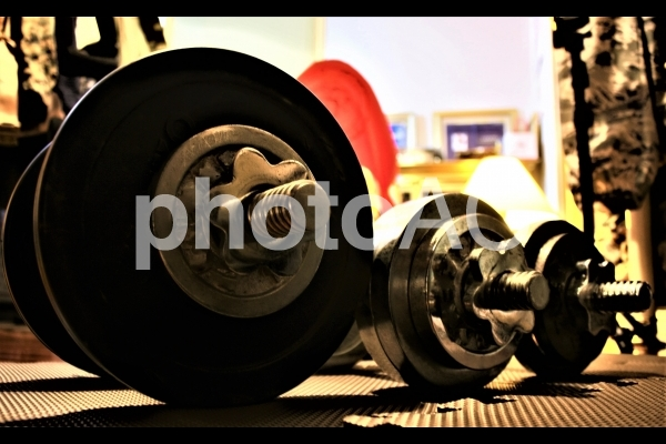 巣ごもり>>ダンベルトレーニングの写真