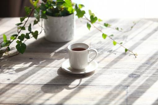 朝の写真素材|写真素材なら「写真AC」無料(フリー)ダウンロードOK