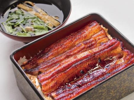 鰻 うなぎ 丑の日 夏 スタミナ 料理 和食 かば焼き