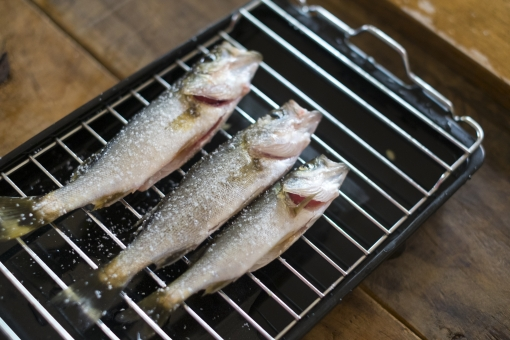 スズキの下処理 スズキ セイゴ コッパ ハクラ 魚 さかな サカナ 鮮魚 下処理 調理 料理 魚料理 お魚 海の幸 焼く グリル 魚焼き網 焼き網 塩焼き
