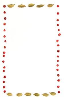 スパイス ハーブ ペッパー 胡椒 こしょう コショウ ピンクペッパー カルダモン グリーンカルダモン 調味料 香辛料 香料 食べ物 食材 乾燥 フレーム 余白 コピースペース テキストスペース 背景 背景素材 バックグラウンド 白 白背景 白バック 並べる 植物 シンプル 枠 囲み枠 複数 ピンク 緑