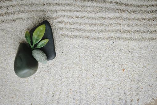 和 和風 禅イメージ 庭 石 枯山水 砂 砂紋 レーキ 日本 日本庭園 日本文化 庭園 わびさび 和寺 石庭 造園 伝統 白砂 風景 イメージ 京都 緑 植物 縁側 風景 コピースペース 俯瞰 線