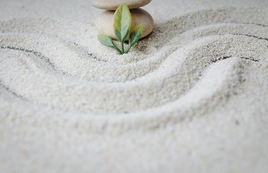 和 和風 禅イメージ 庭 石 枯山水 砂 砂紋 レーキ 日本 日本庭園 日本文化 庭園 わびさび 和寺 石庭 造園 伝統 白砂 風景 イメージ 京都  縁側 風景 緑 植物 葉 アップ 線