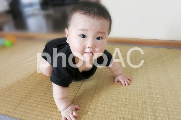 びっくりする赤ちゃん 3の写真