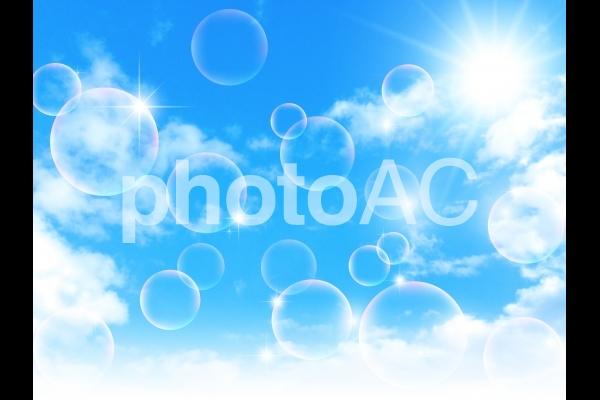 空16の写真